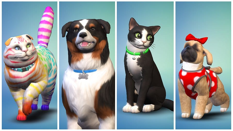 Les Sims 4 Chiens et Chats [10 Novembre 2017] TS4_EP04_OFFICIAL_SCREEN_01_002_1080
