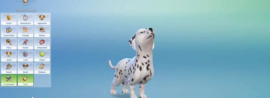 Créer Un Animal : Les premières révélations