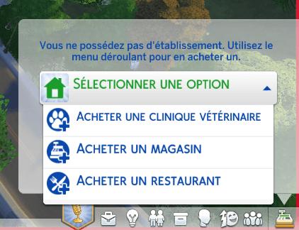 Ouvrir une clinique vétérinaire sims 4 chiens et chats