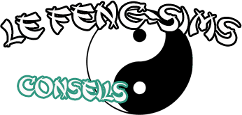 Le Feng-Sims, Conseils