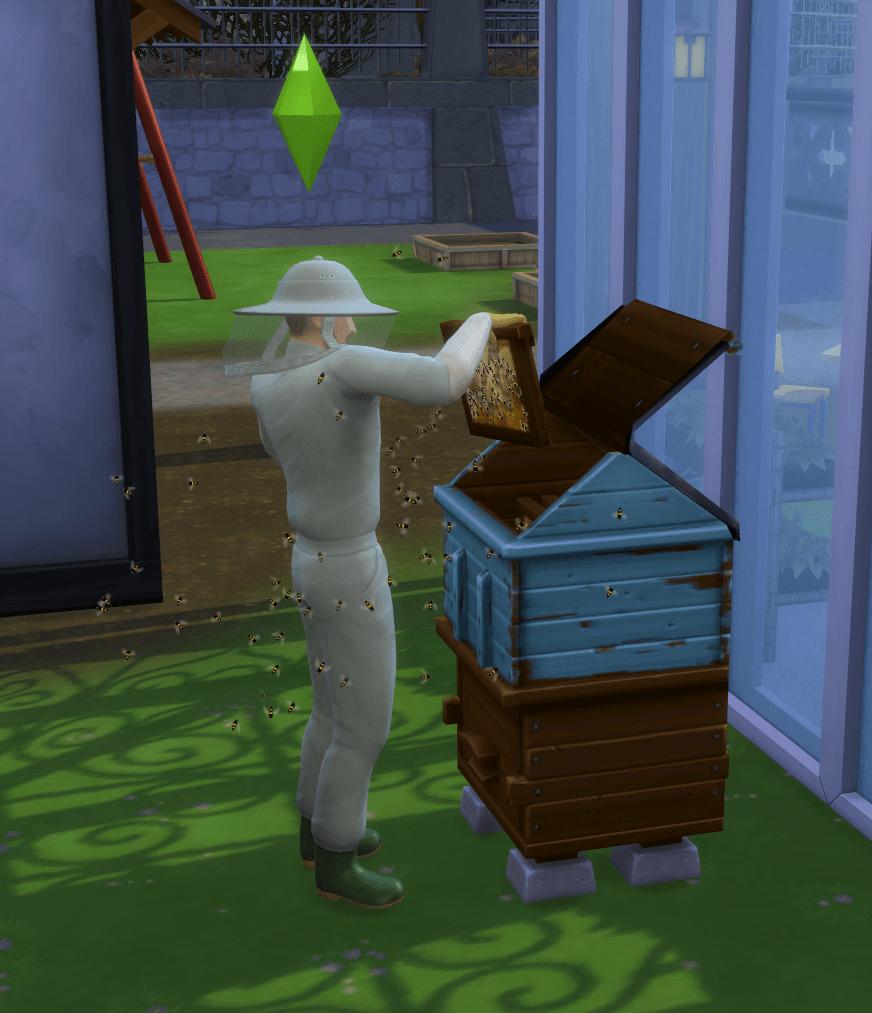 Apiculture Sims 4 Saisons