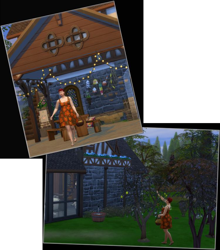 , Bienvenue chez les Amaziens : la Goélette