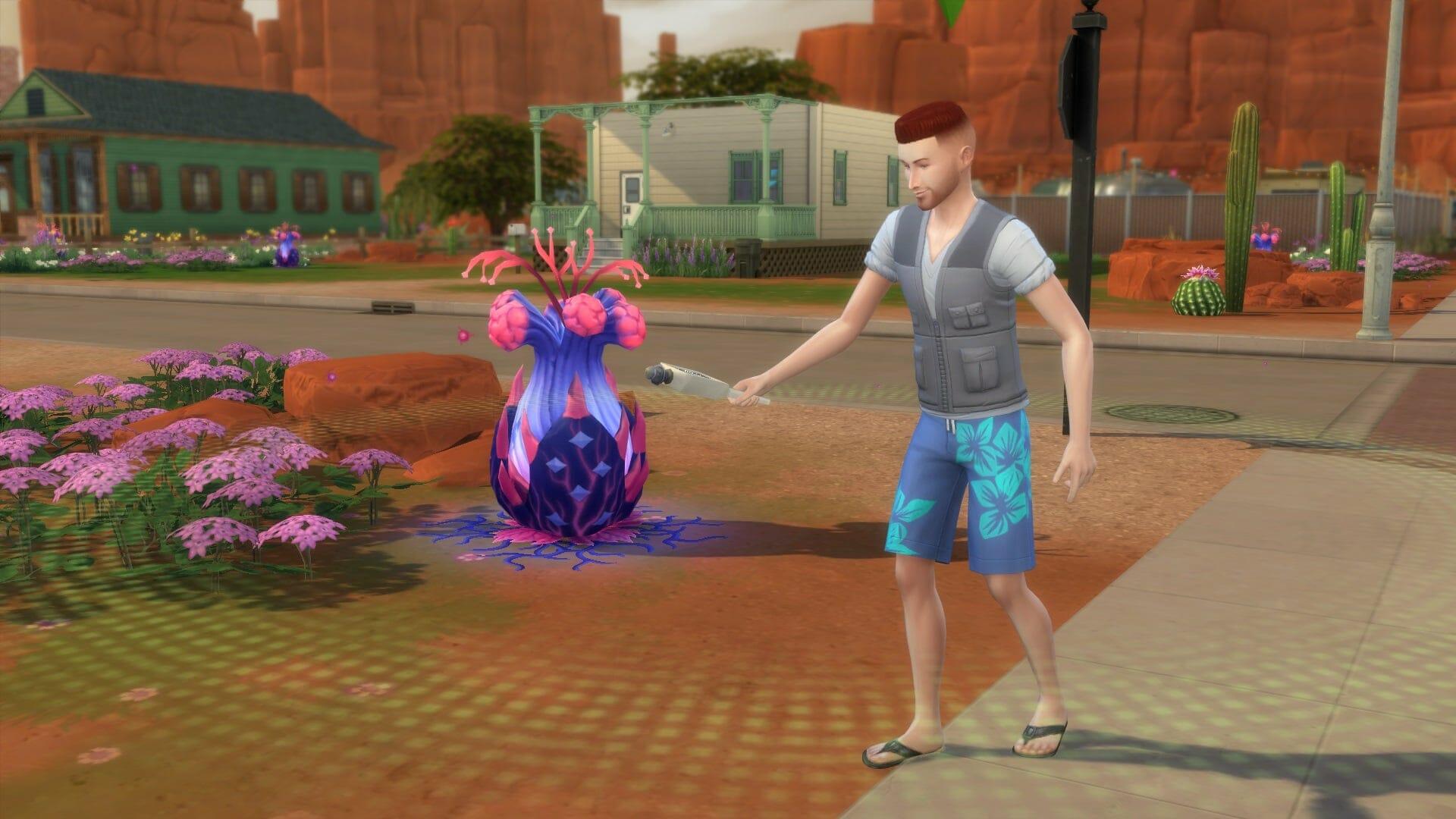 Plantes sims 4 stranger ville