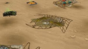 Images de la présentation de l'extension Iles Paradisiaques