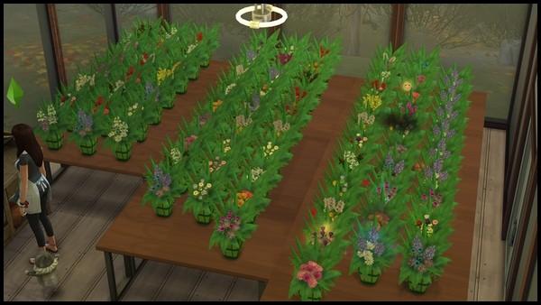 Zoom sur… les fleuristes