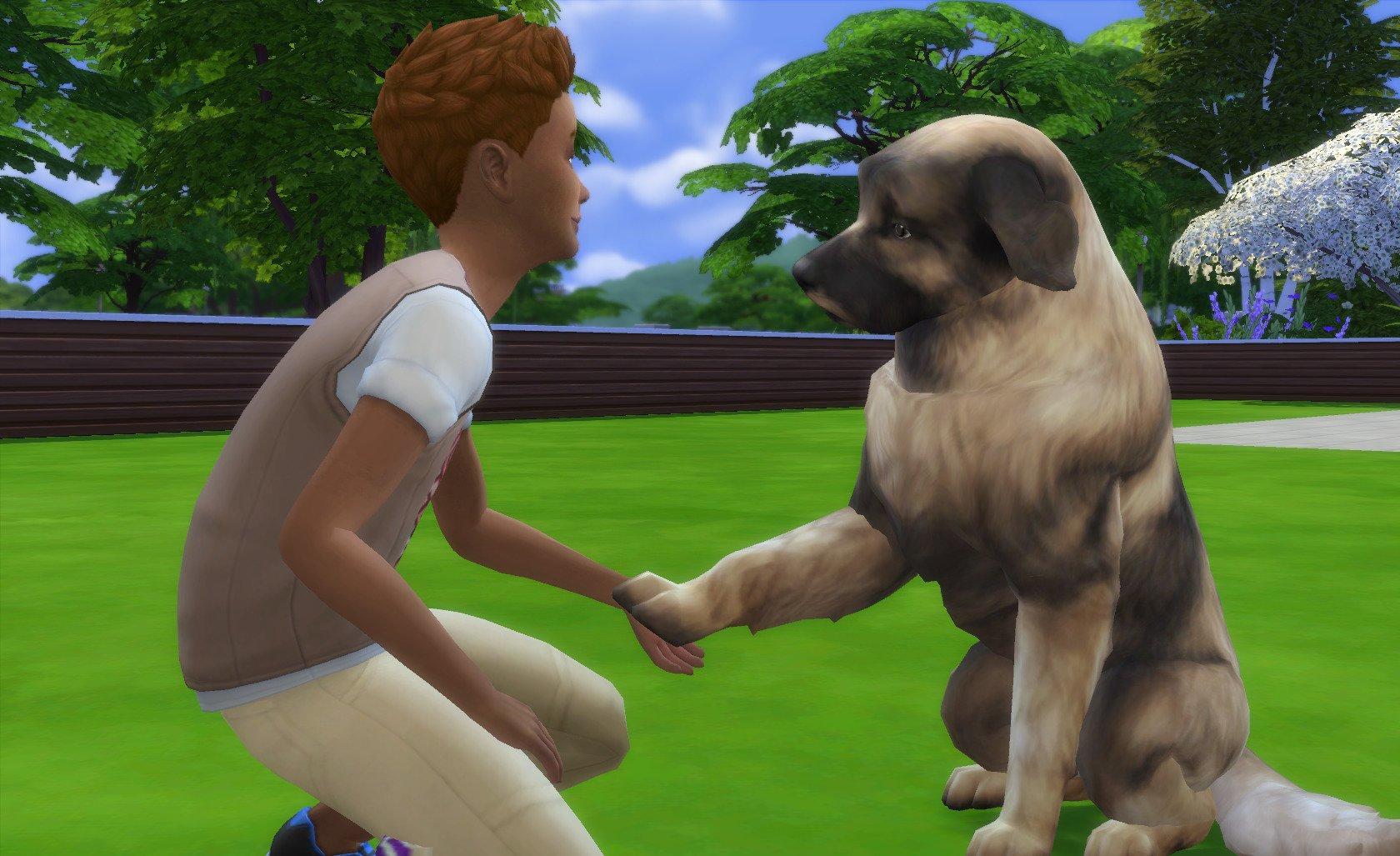 L'animal idéal pour vos petits Sims