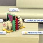 Les Sims 4 : Mise à jour 1.60