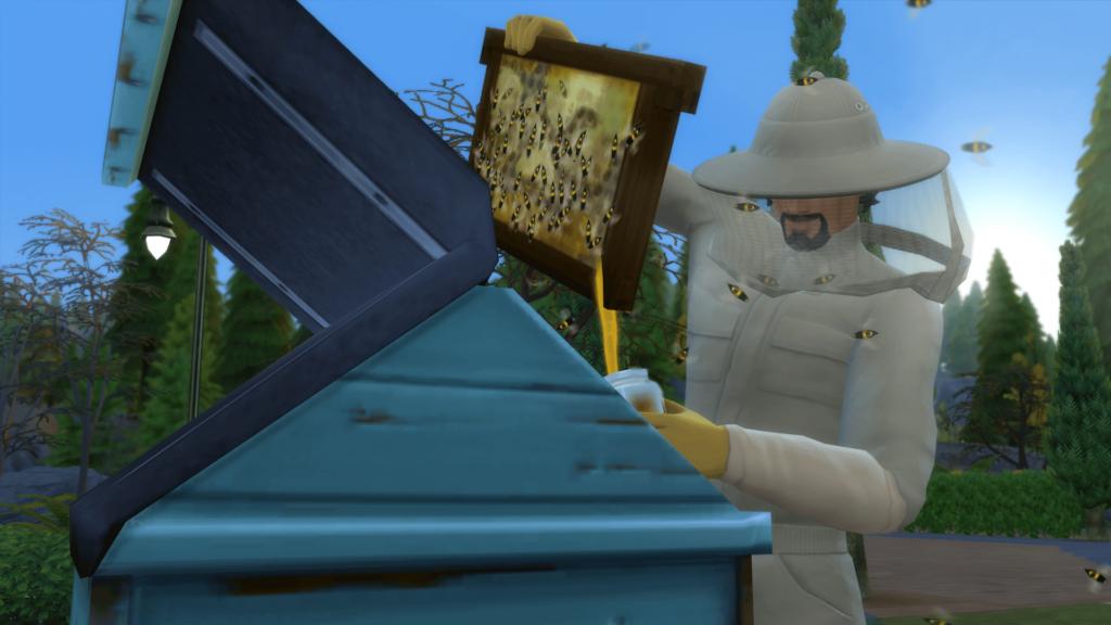 Apiculteur récolte miel ruche sims 4 saisons