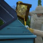 Zoom sur l'apiculture dans Les Sims 4