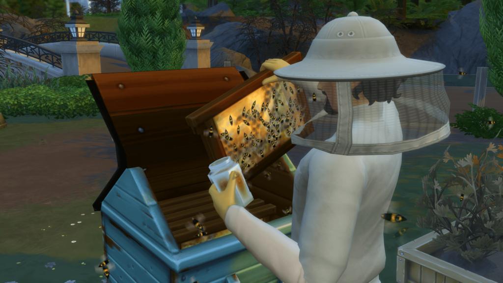 Récolter miel sims 4 saisons