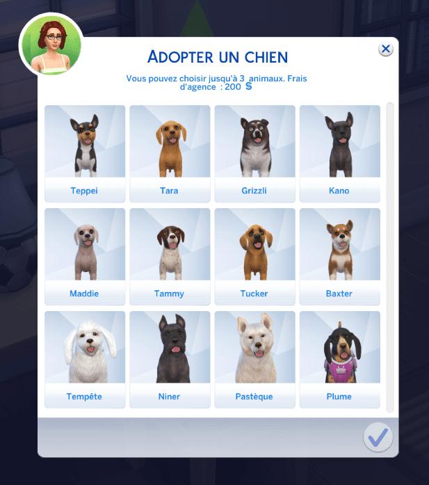 Adopter un chien sims 4