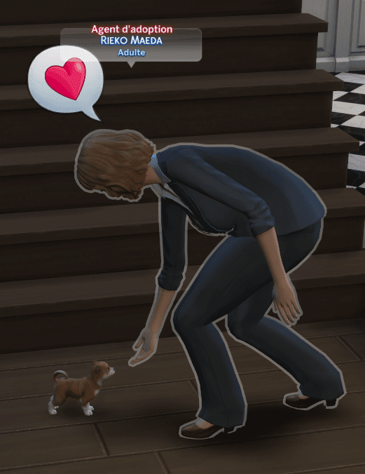 Agent adoption sims 4 chiens et chats