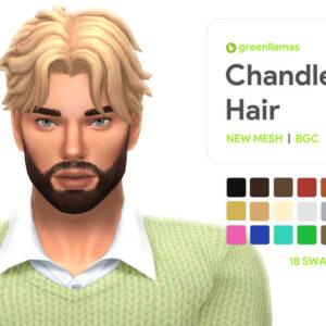 Coiffure Chandler