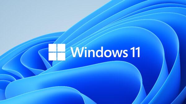 Les Sims 4 compatible avec Windows 11