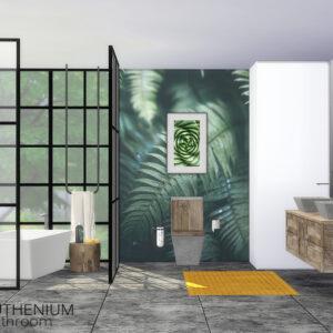 Salle de bain Ruthenium