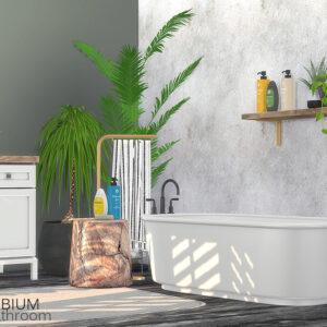 Salle de bain Erbium