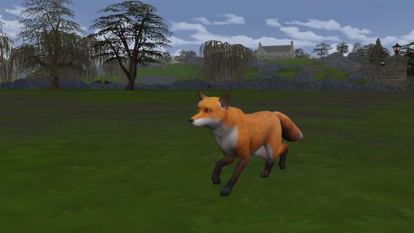 Les défis de terrain des Sims 4