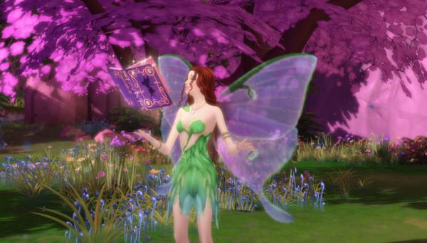 Fairies vs. Witches